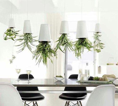 http://greendom.net/images/interior/pot3.jpg