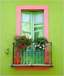 растения выбрать для балкона
