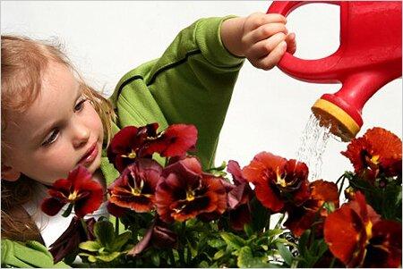 Цветы для детской